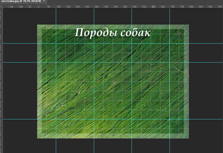 эскиз таблицы в фотошопе
