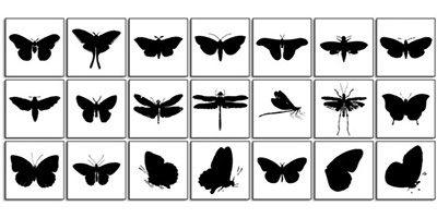 Фигуры летающих насекомых