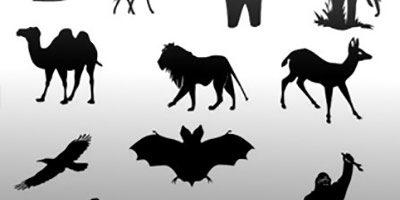 Фигура - Коллекция животных