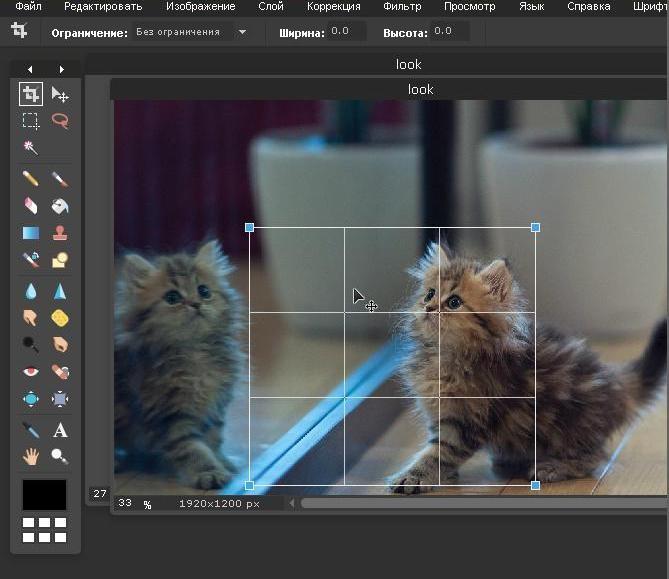 как обрезать фото в фотошопе онлайн