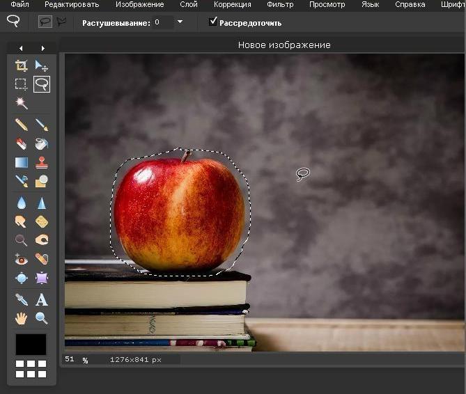 как выделить участок на фото в фотошопе онлайн